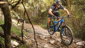 Mountain Biking: Tips for your First Trip