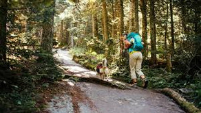 4 Essential Hiking Tips