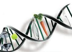 Genética x Doenças Cardíacas