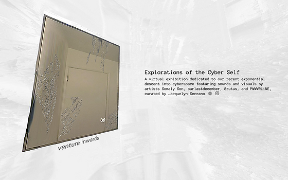 Explorations of the Cyber Self