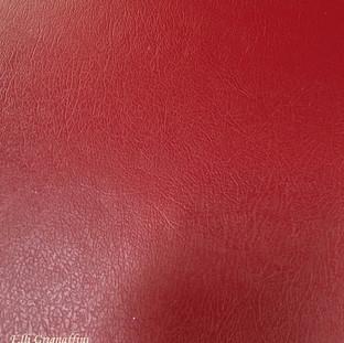 Ecopelle Rossa col 501