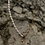 Thumbnail: Cross Pearl Necklace
