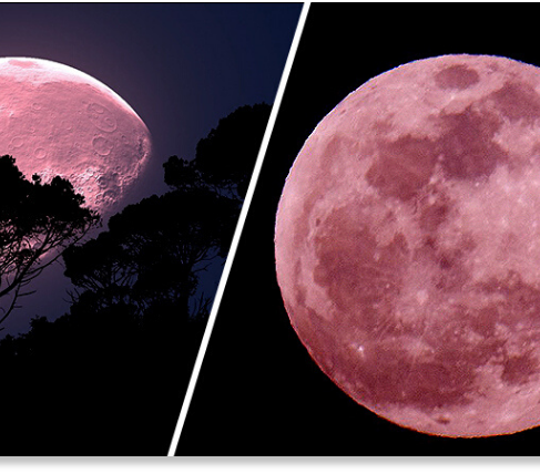 Don't Miss the 'Super Pink Moon' Tonight