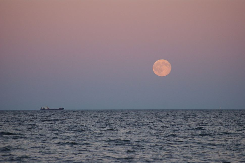 pink moon over the water