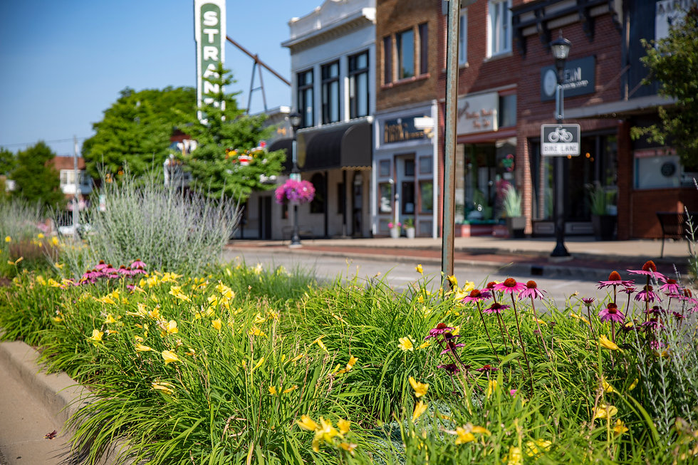 view from flower bed of storefronts in downtown sturgis michigan in summer