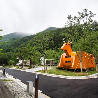 봉화 청량산 캠핑장