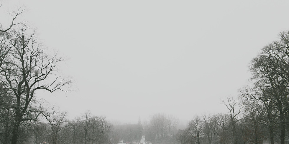 Winter Walking Meditation