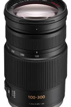 Panasonic LUMIX G VARIO 100-300mm F4-5.6 OIS