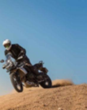 Tiger-800-Press-Ride_02-18-81-950x1200.j