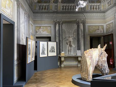 La mostra degli Alberi Monumentali Piemontesi di Federica Galli riapre