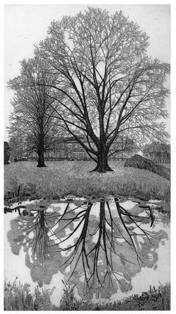 Il giardino della villa Reale a Monza, Lombardia