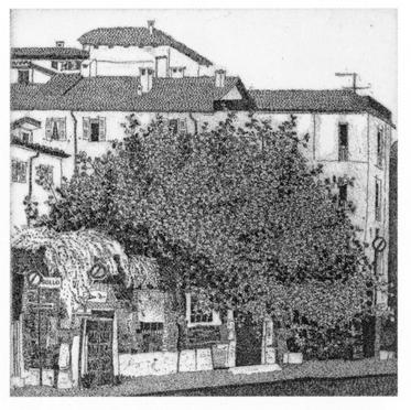 Il fico delle 5 vie, Milano