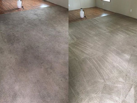 Choose the Best Carpet Cleaning Service!