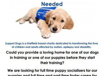 SupportDogs drop-in session, Wednesday 30 May 2018