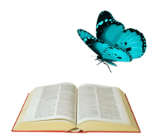 Blog Number One (1):  The Dictionary and the Butterfly