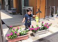 お花に水やり.jpg