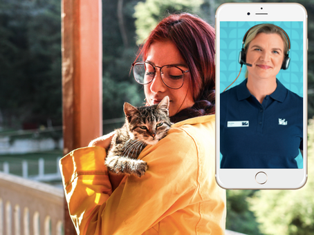 Få veterinær tilgjengelig på mobilen- helt gratis!
