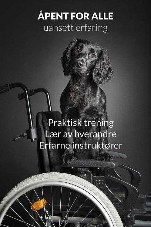 DAI Samling Høstferie 28/9 - 30/9