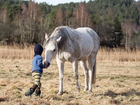 Med hjerte for barn, dyr og natur