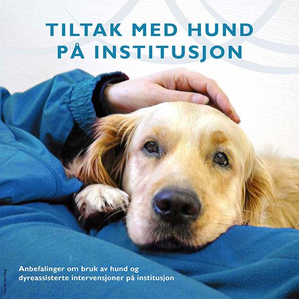 Helsedirektoratet-retningslinjer.jpg