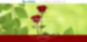 Homepage erstellt von lema webdesign