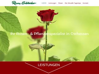 Rosen, Rosen, Rosen Schleicher
