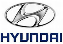 Opel Autohaus Kreis Fulda Großenlüder Tuning Box für Hyundai