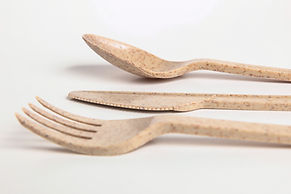 AvoplastiQs eco friendly agave cutlery