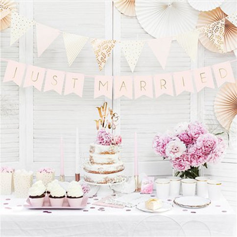 Pastel pink just married bunting