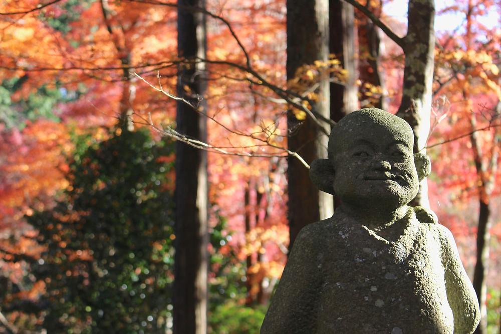 箱根仙石原 長安寺の紅葉