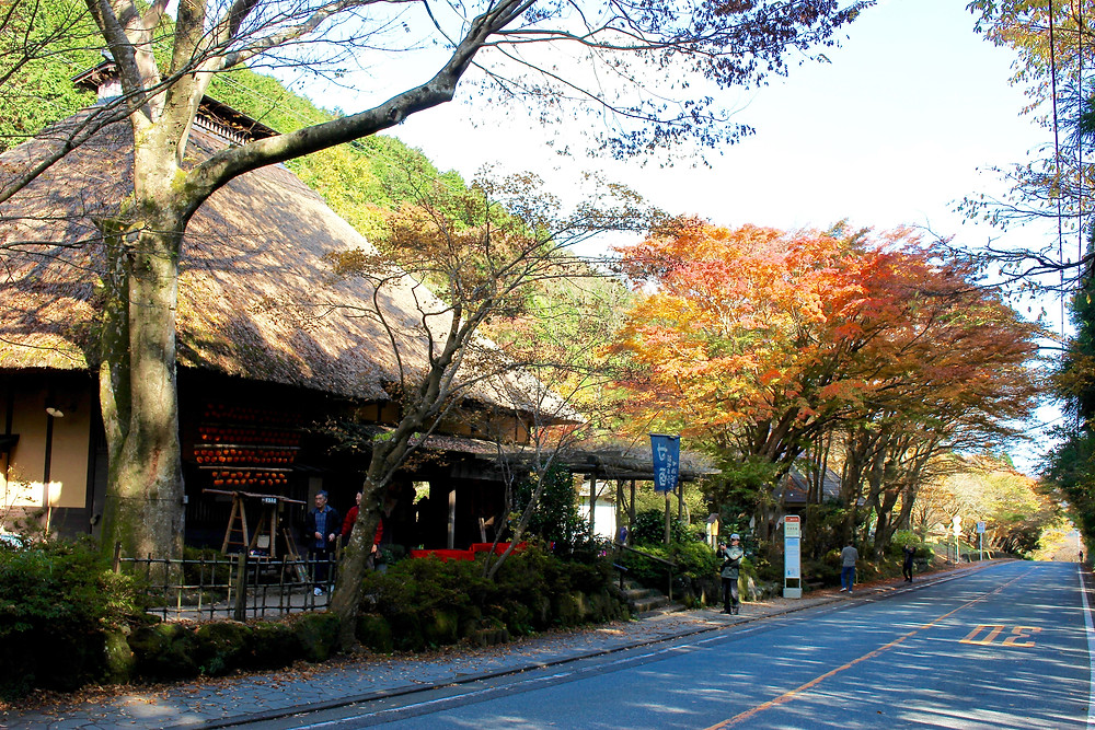 箱根 甘酒茶屋の紅葉