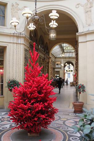 Xmasまで後5日 クリスマスの情景 第二十話(パリ)
