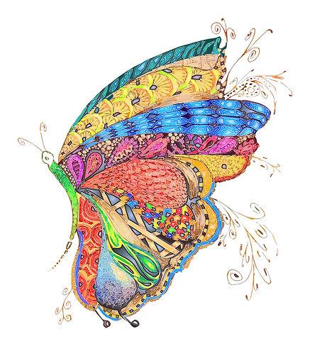Papillon vif.jpg