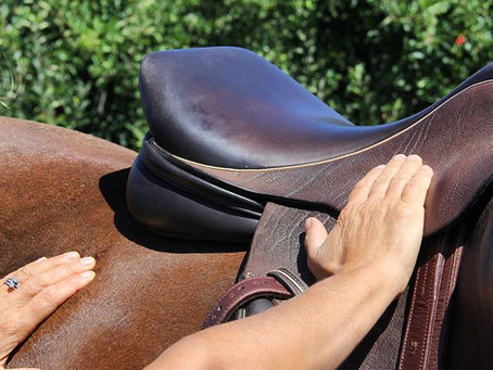 What to know when buying a used saddle