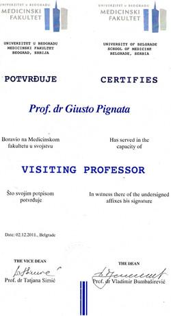 visiting professor 2