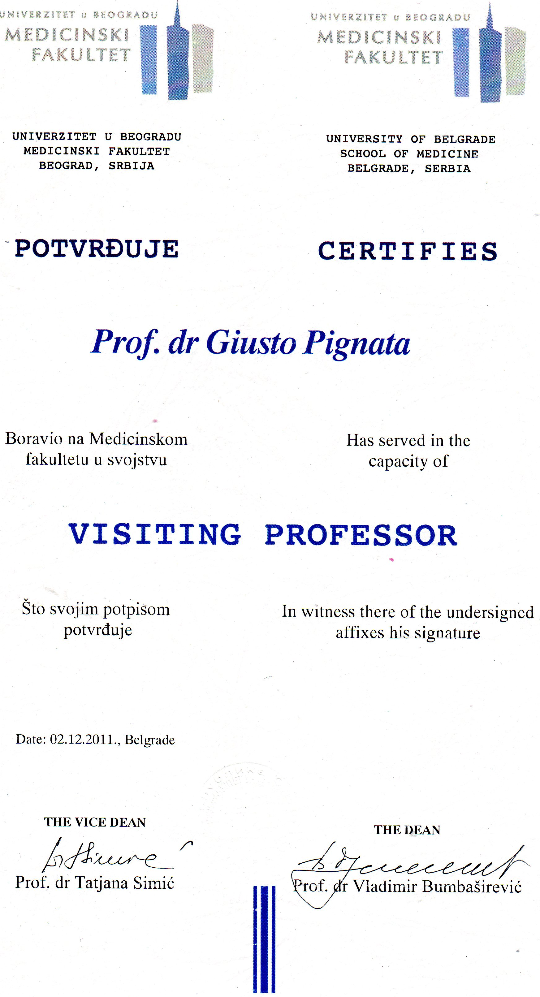 visiting professor