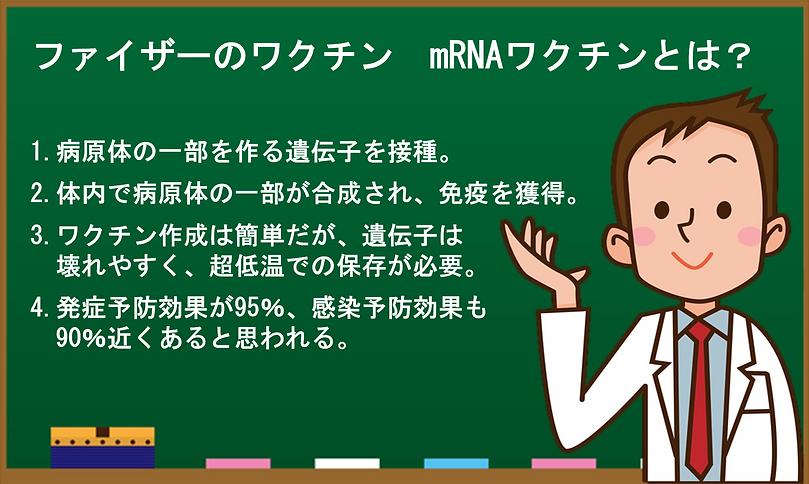 mRNAとは.png