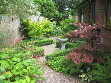 small paved courtyard garden with planti