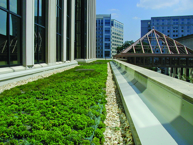 The transformative effects of urban greening - creating biodiversity in green spaces