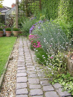 Cobbles laid as a path against a mixed planting border