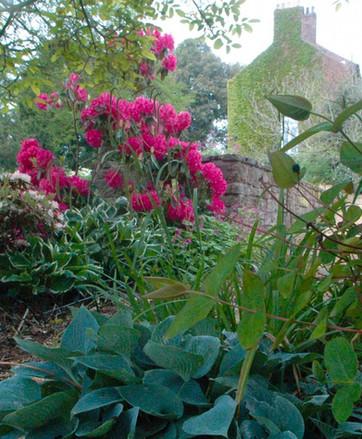 Cheshire Country Garden.jpg