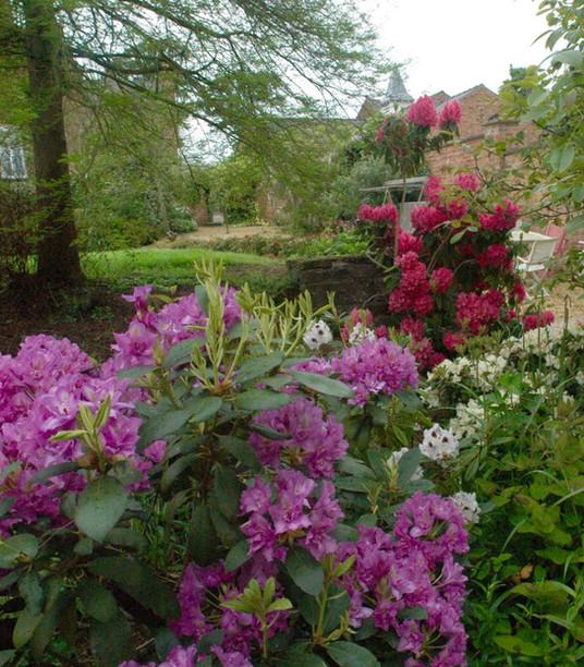 Cheshire Country Garden 1.jpg