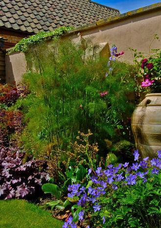 Gardens and portraits 033.jpg
