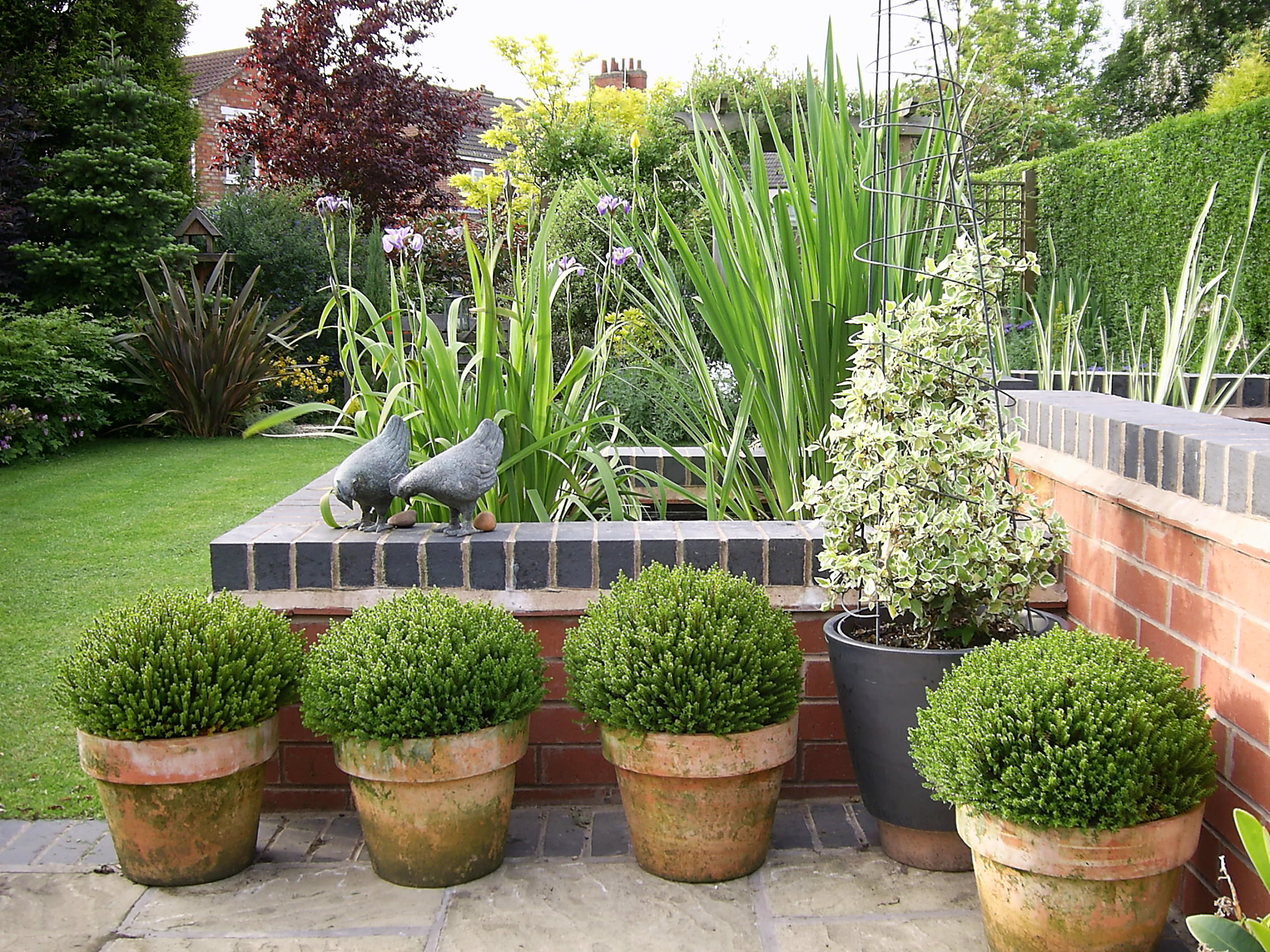 Two tier raised pond on the corner of a paved terrace with box speres in pots softening the face of