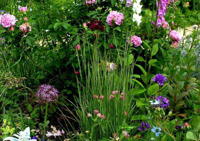 Gardens and portraits 053.jpg