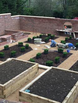 work in progress - vegetable garden and