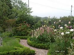 garden jun2006 009-c5227 - Copy