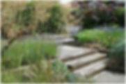 front garden in Halebarns 3.jpg