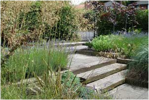 front garden in Halebarns 3.jpg