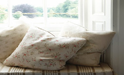 window seat with scatter cushions - Copy